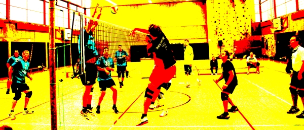 Volleyball Landesmeisterschaft 2014 Köln